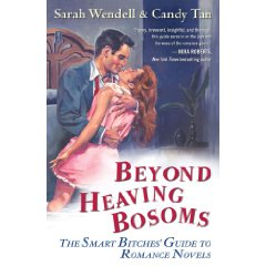 Beyond Heaving Bosoms: Smart Bitches Guide to Trashy Novels